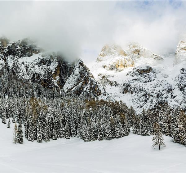 correlato_Alpi Ledrensi e Judicaria (Trentino-Alto Adige)