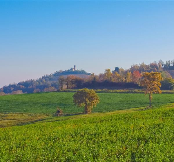 correlato_Collina Po (Piemonte)