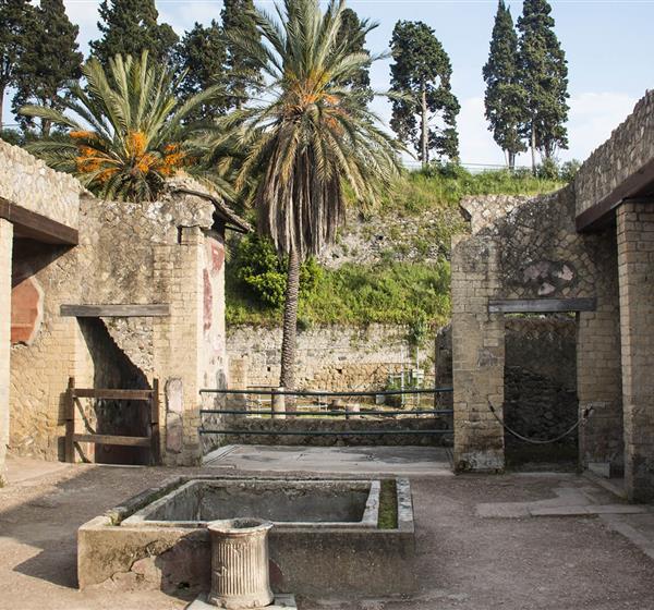 correlato_Aree archeologiche di Pompei, Ercolano e Torre Annunziata