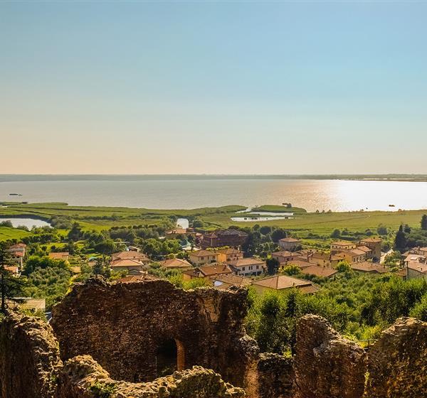 correlato_Selve costiere di Toscana (Toscana)